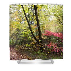 Appalachian Mountain Trail Shower Curtain