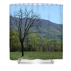 Appalachian Pathway Shower Curtain by Mark Minier