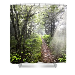 Appalachian Trail Shower Curtain by Debra and Dave Vanderlaan