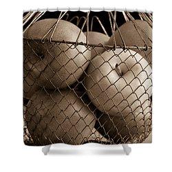 Apple Basket Still Life Shower Curtain by Edward Fielding
