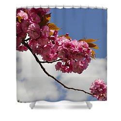 Apple Beauty Shower Curtain