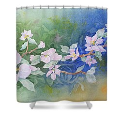 Apple Blossoms 2 Shower Curtain