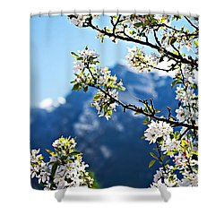 Apple Blossoms Frame The Rockies Shower Curtain by Lisa Knechtel