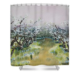 Apple Blossoms In Ellijay -apple Trees - Blooming Shower Curtain