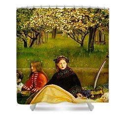 Apple Blossoms Shower Curtain by John Everette Millais