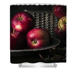 Apple Harvest Shower Curtain by Edward Fielding