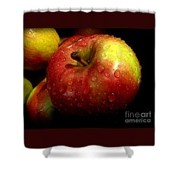 Apple In The Rain Shower Curtain