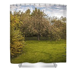 Apple Orchard Shower Curtain by Amanda Elwell