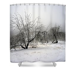 Apple Orchard Shower Curtain by Hugh Smith