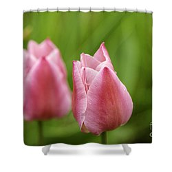 Apple Pink Tulips Shower Curtain
