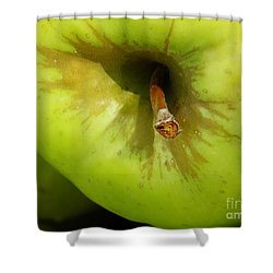 Apple Shower Curtain by Sarah Loft