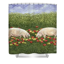 Apple Sows Shower Curtain by Ditz
