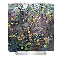 Apple Tree  Shower Curtain by Ylli Haruni