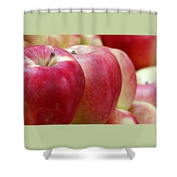 Apples For Sale Shower Curtain by Ben and Raisa Gertsberg