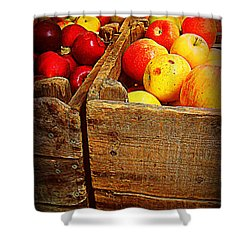 Shower Curtain featuring the photograph Apples In Old Bin by Miriam Danar