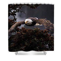 Approaching Eagle-signed- Shower Curtain