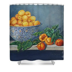 Apricots And Peaches Shower Curtain