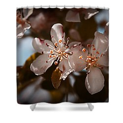 April In Colors Shower Curtain