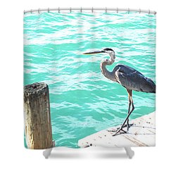 Aqua Bliss Shower Curtain by Margie Amberge