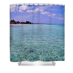 Aqua Blue Shower Curtain by Carey Chen