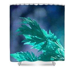 Aqua Dreams  Shower Curtain by First Star Art
