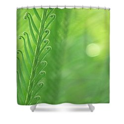 Shower Curtain featuring the photograph Arabesque by Evelyn Tambour