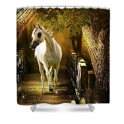 Arabian Dream Shower Curtain