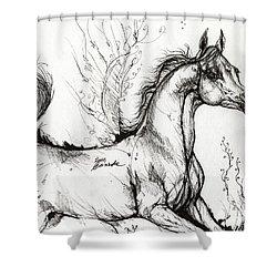 Arabian Horse Drawing 1 Shower Curtain by Angel  Tarantella