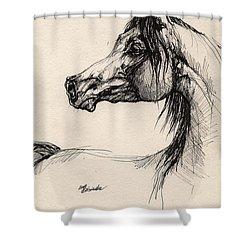 Arabian Horse Drawing 26 Shower Curtain by Angel  Tarantella