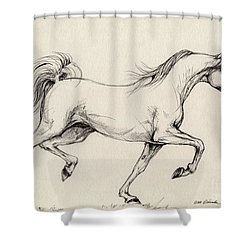 Arabian Horse Drawing 31 Shower Curtain by Angel  Tarantella