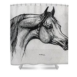 Arabian Horse Drawing 40 Shower Curtain by Angel  Tarantella