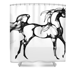 Arabian Horse Overlook Shower Curtain