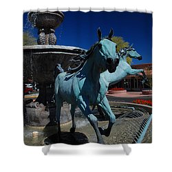 Arabian Horse Sculpture Shower Curtain