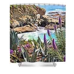 Arch Rock Laguna Shower Curtain