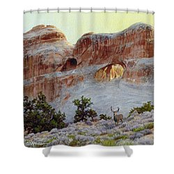 Arches Mulie Shower Curtain
