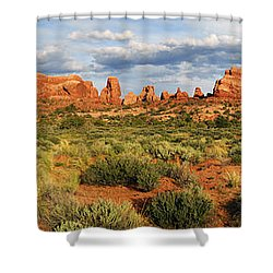 Arches National Park Panorama Shower Curtain by Dave Mills