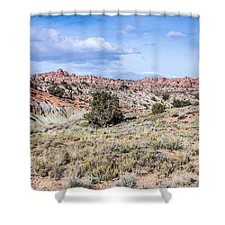 Shower Curtain featuring the photograph Arches Salt Valley Gulch by Daniel Hebard