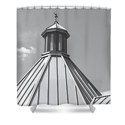 Architectural Gray Shower Curtain by Ann Horn