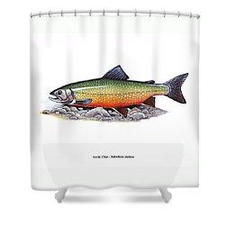 Arctic Char Male Shower Curtain