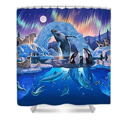 Arctic Harmony Shower Curtain by Chris Heitt