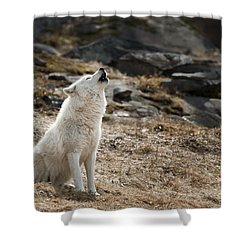 Shower Curtain featuring the photograph Arctic Wolf Howling by Wolves Only
