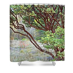 Shower Curtain featuring the photograph Arctostaphylos Hybrid by Kate Brown