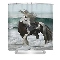 Ard Ri Shower Curtain by Lynn Jackson