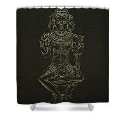 Shower Curtain featuring the drawing Ardhanarishvara I by Michele Myers