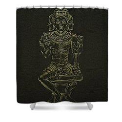 Ardhanarishvara I Shower Curtain by Michele Myers