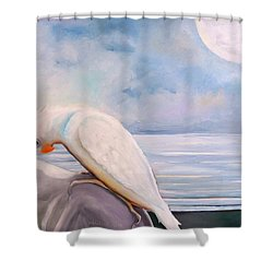Are... Shower Curtain