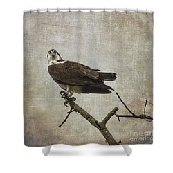 Are You Finished Shower Curtain