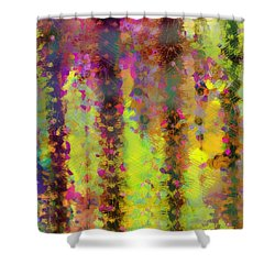 Arizona Abstract 2 Shower Curtain