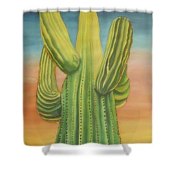 Arizona Cactus Shower Curtain