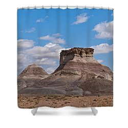 Shower Curtain featuring the photograph Arizona Desert And Mesa by Jeff Goulden